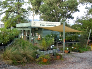 Candlebark Community Nursery in Mooroolbark